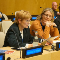 International Day of Families Observed at UN